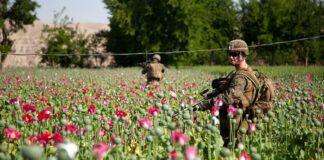 opium soldater