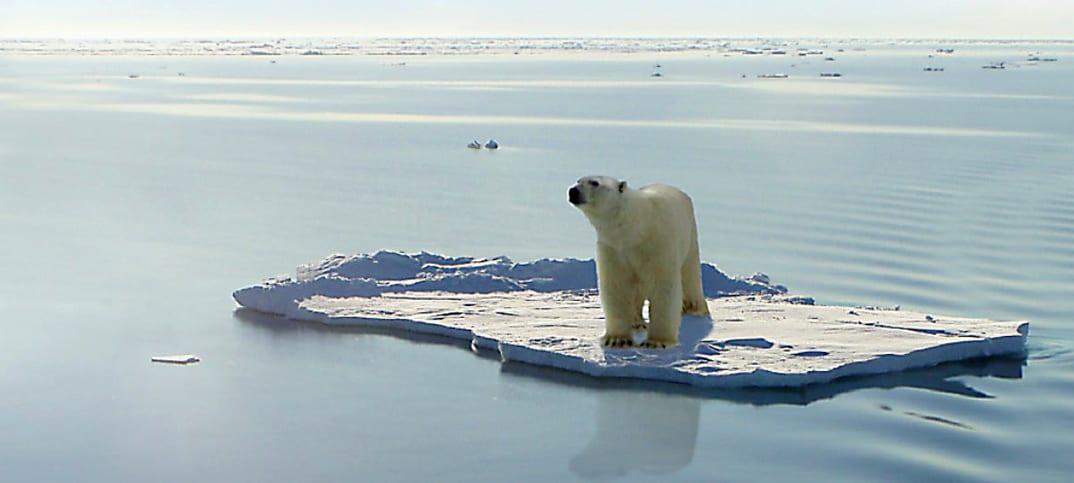 global uppvärmning FN-rapport