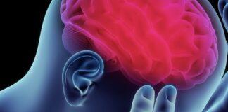 hjärna Tio tecken Känn världen Open Mind Conference