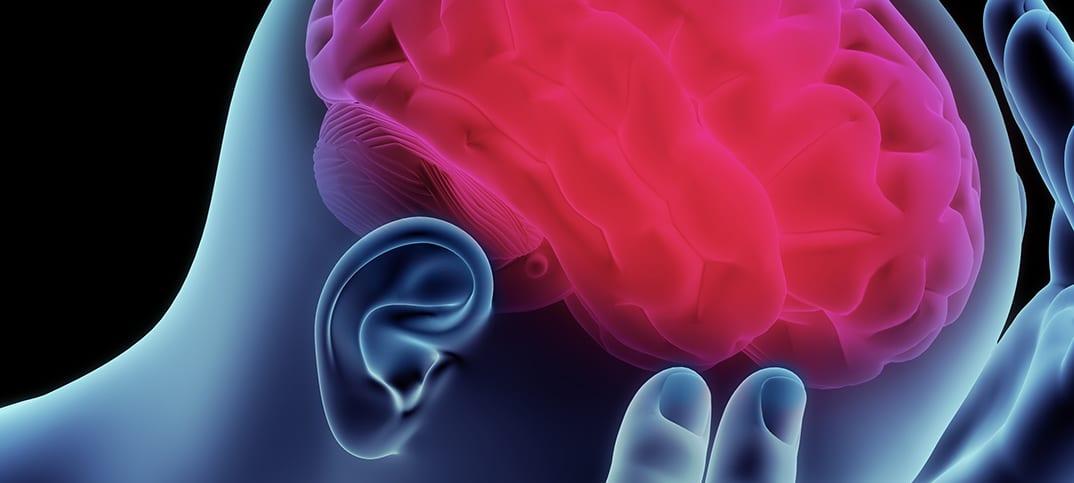 hjärna Tio tecken Känn världen Open Mind Conference läsa dina tankar