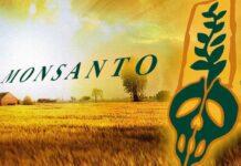 monsantoland satsar miljoner patenterar bröstmjölk March Against Monsanto i Stockholm amerikanska tjänstemän