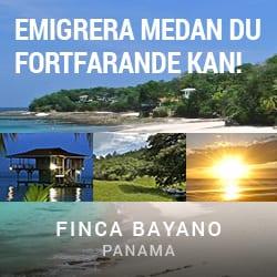 banner-250x250-fincabayano