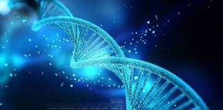 DNA databas