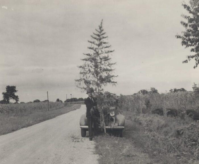 1 NC - H. J. Ansling Specimen of marijuana growing on farm near Plano, Illinois (1938)