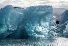 skrämmas med klimatkris Klimatalarmisterna