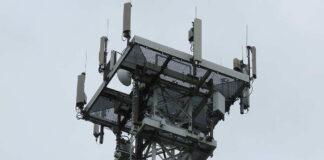 Företag bör avvakta 5G-utbyggnad 5G-frekvenser oxidativ stress