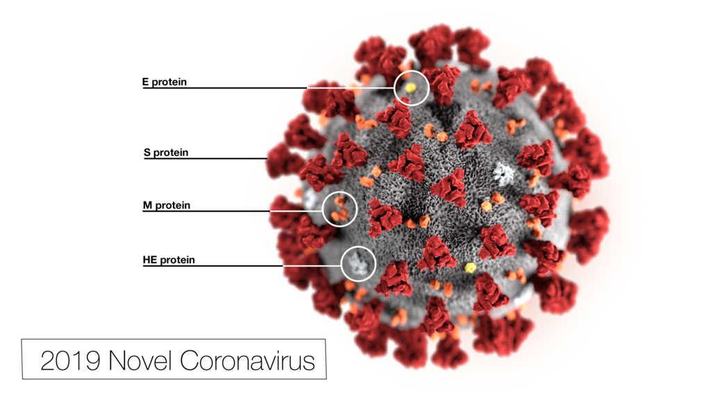 stänga ner Covid-19 och kolesterol Biovapenexpert