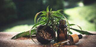 endocannabinoida systemet