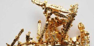 Kolloidalt guld