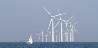 Elsa Widding vindkraftens risker