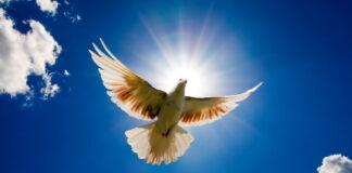Kriga för fred
